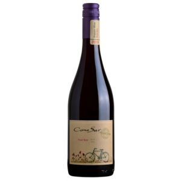 2018 Cono Sur Organic Pinot Noir Chile